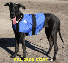 HALF PRICE CLEARANCE PROFESSIONAL QUALITY HyperKewl Dog Cooling Coat - Pet Protector Australia