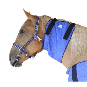 HALF PRICE // HyperKewl™ Evaporative Cooling Horse Neck Wrap