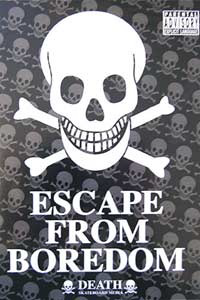 Escape From Boredom Skate DVD