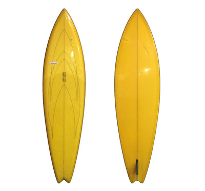 Fluid Visions 6'6 Collector Surfboard