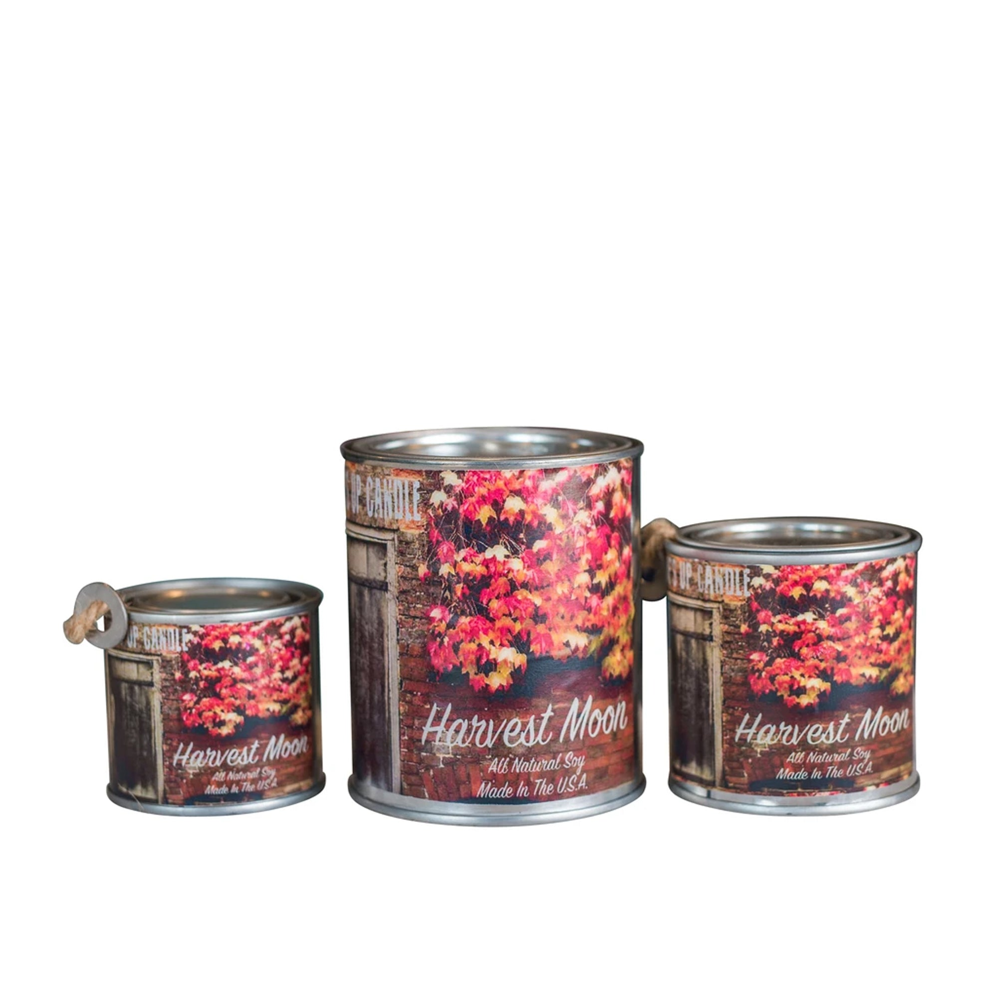 Surf's Up Seasonal Paint Can Soy Candle - Harvest Moon