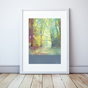 A Doorway Framed Print by Abigail Bryan