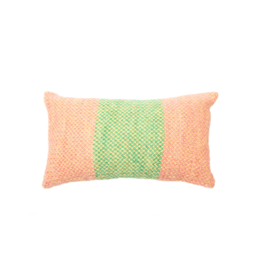 Alpaca Citrus Fruit Pillow