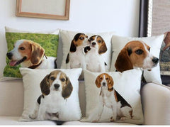 Beagle Pillow (Photo Print)