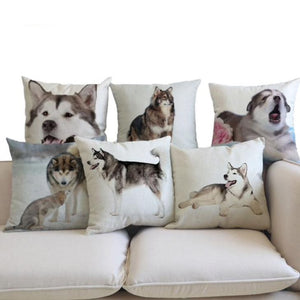 Alaskan Malamute Pillow (Photo Print)