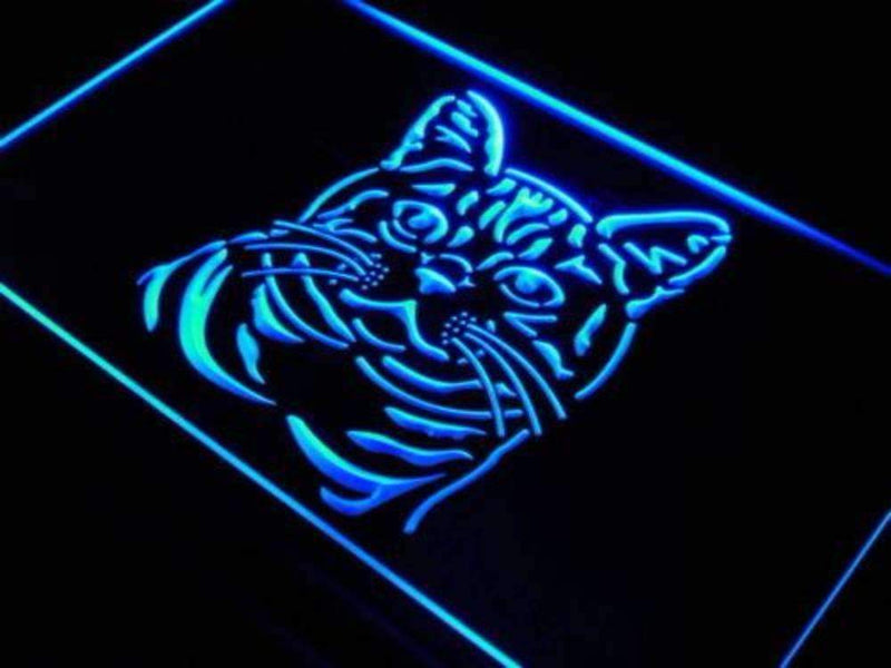 American Shorthair Cat LED Neon Light Sign - Way Up Gifts
