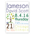 Personalized Baby Boy Announcement Canvas Sign - Way Up Gifts