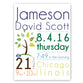 Personalized Baby Boy Announcement Canvas Sign