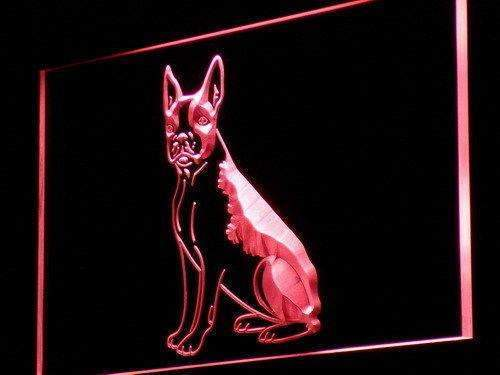 Boston Terrier Dog LED Neon Light Sign - Way Up Gifts