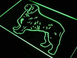 Clumber Spaniel Neon Sign (LED)-Way Up Gifts