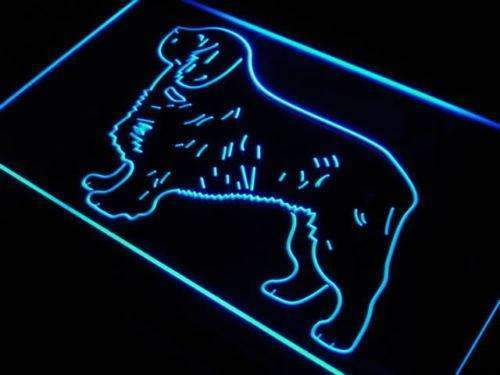 Clumber Spaniel Neon Sign (LED)