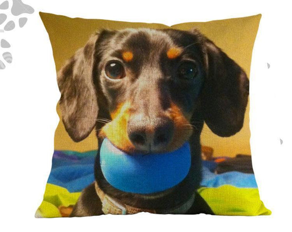 Decorative Dachshund Couch Throw Pillow