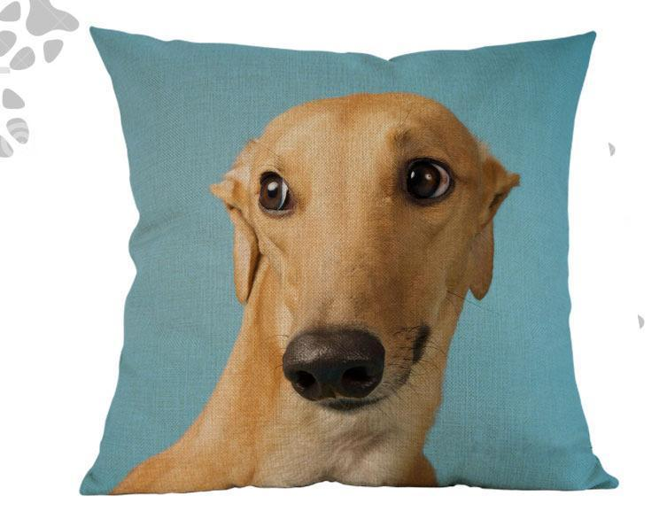 Buy Greyhound Pillow For 19.99 USD