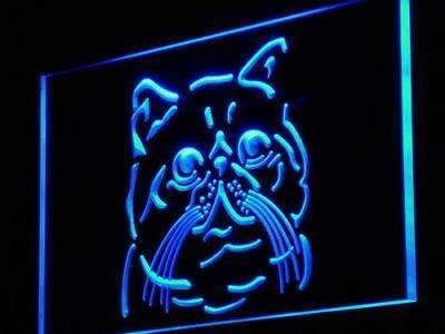 Exotic Shorthair Cat Neon Sign (LED)-Way Up Gifts