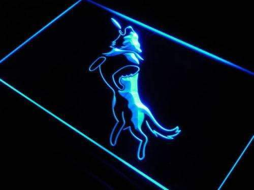 Frisbee Dog LED Neon Light Sign - Way Up Gifts