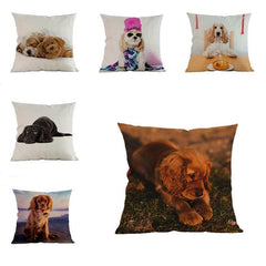 American Cocker Spaniel Pillow (Photo Print)