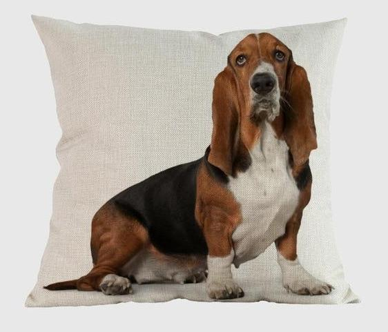 Basset Hound Pillow R / 14x14