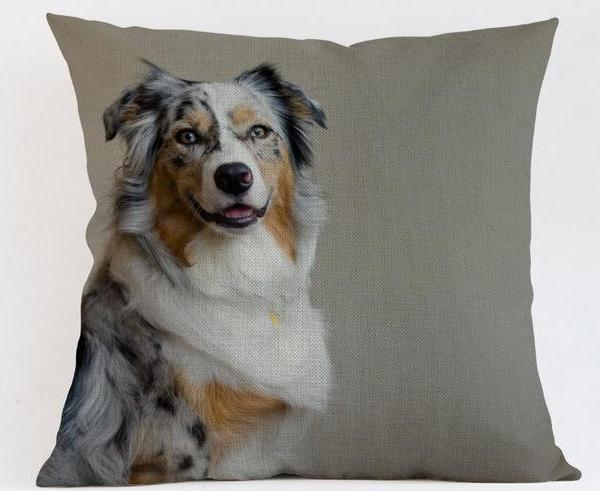 Border Collie Pillow - Way Up Gifts