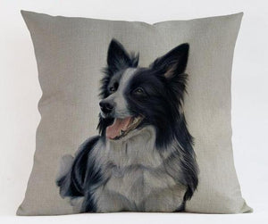 Border Collie Pillow (Photo Print)