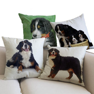Bernese Mountain Dog Pillow (Photo Print)