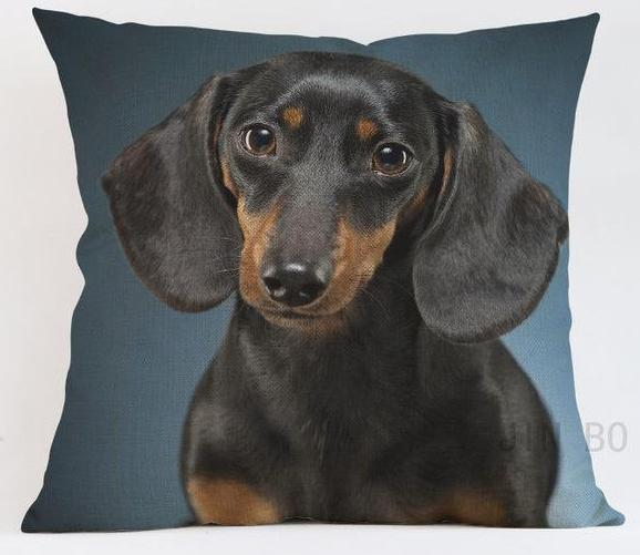 Dachshund Pillow - Way Up Gifts