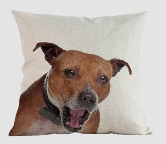 Staffordshire Bull Terrier Pillow - Way Up Gifts