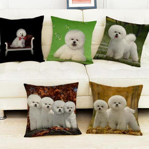 Bichon Frise Pillow (Photo Print)
