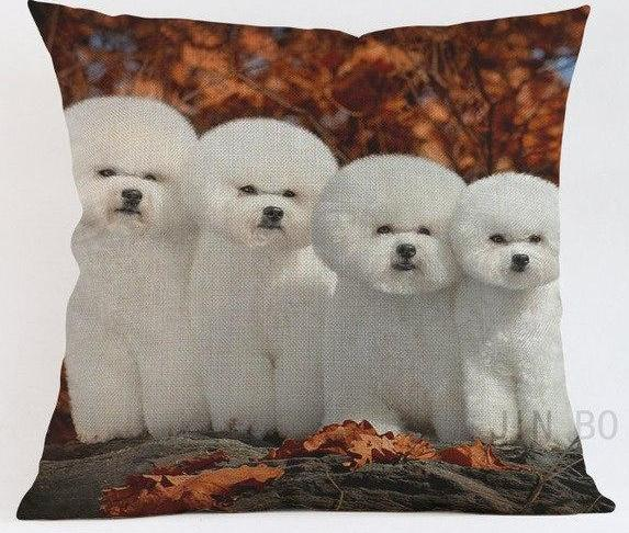 Bichon Frise Pillow - Way Up Gifts