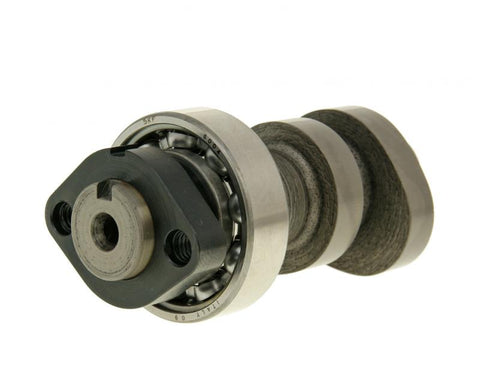 camshaft Malossi Power Cam for Honda SH 300i, NSS 300i