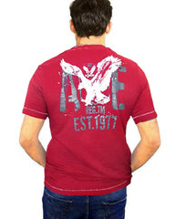 MEN'S 1977 NORTH EAST TEE | AMERICAN EAGLE
