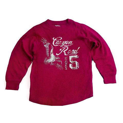 BOYS CANYON  T-SHIRT| GAP-(4Y-16Y)