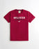 MEN'S LOGO GRAPHIC TEE | HOLISTER