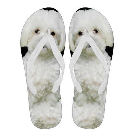 Maltese Flip Flops For Women-Free Shipping-Paww-Printz-Merchandise