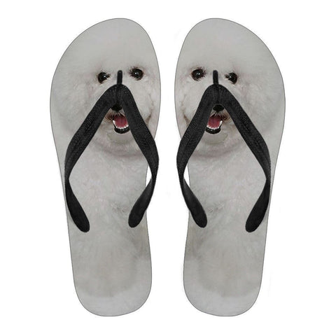 Bichon Flip Flops For Men-Free Shipping-Paww-Printz-Merchandise