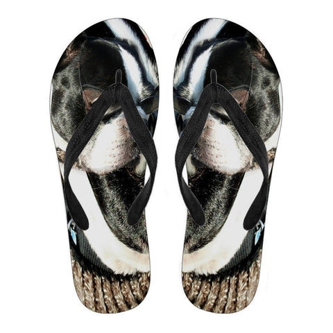 Boston Terrier Men's Flip Flops- Free Shipping-Paww-Printz-Merchandise