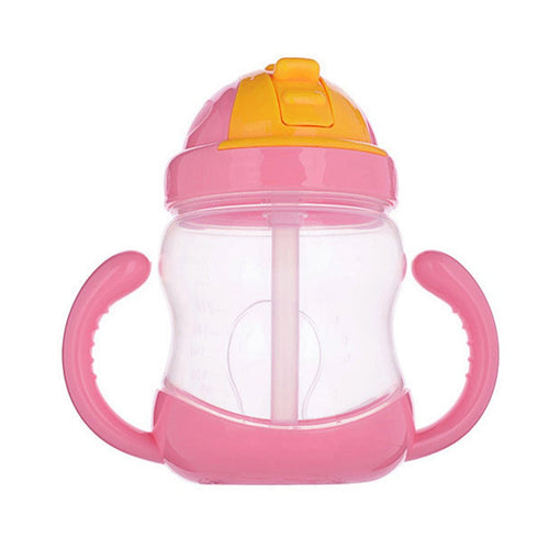 Leakproof Sippy Cup With Straw Spout