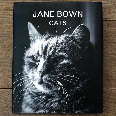 Jane Bown, Cats - A BAG FULL OF KIM - Kim Sion