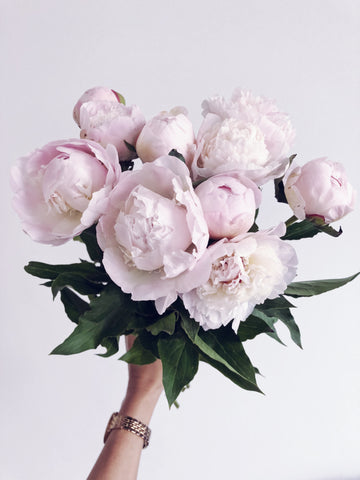 peonies delivered in Dubai free