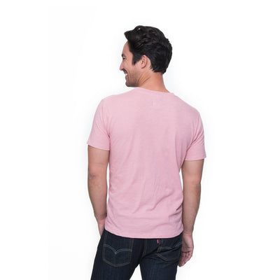 Back view of Henry in dusty rose