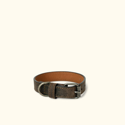 Denver Leather Dog Collar | Dark Walnut
