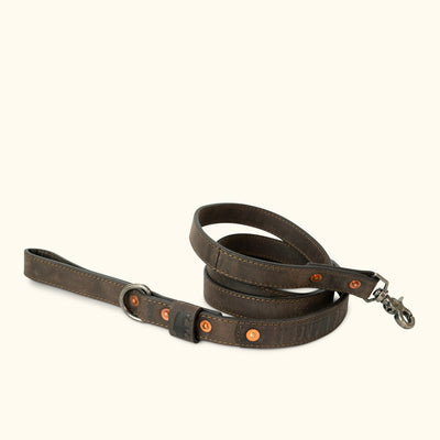 Denver Leather Dog Leash | Dark Walnut