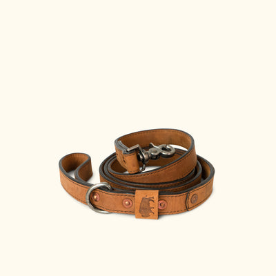 Denver Leather Dog Leash | Sienna Brown