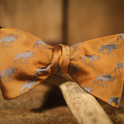 Moose - Orange - Bow Tie