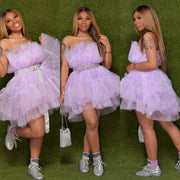 DON'T MESS WITH MY TUTU DRESS