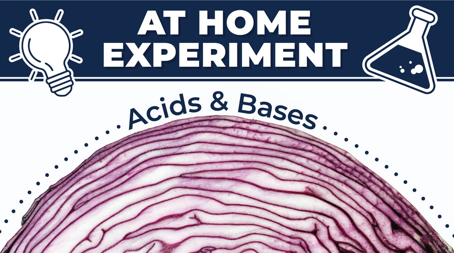 At Home Experiment: Acids & Bases