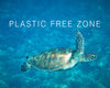 plastic free july, circular economy, world without plastic