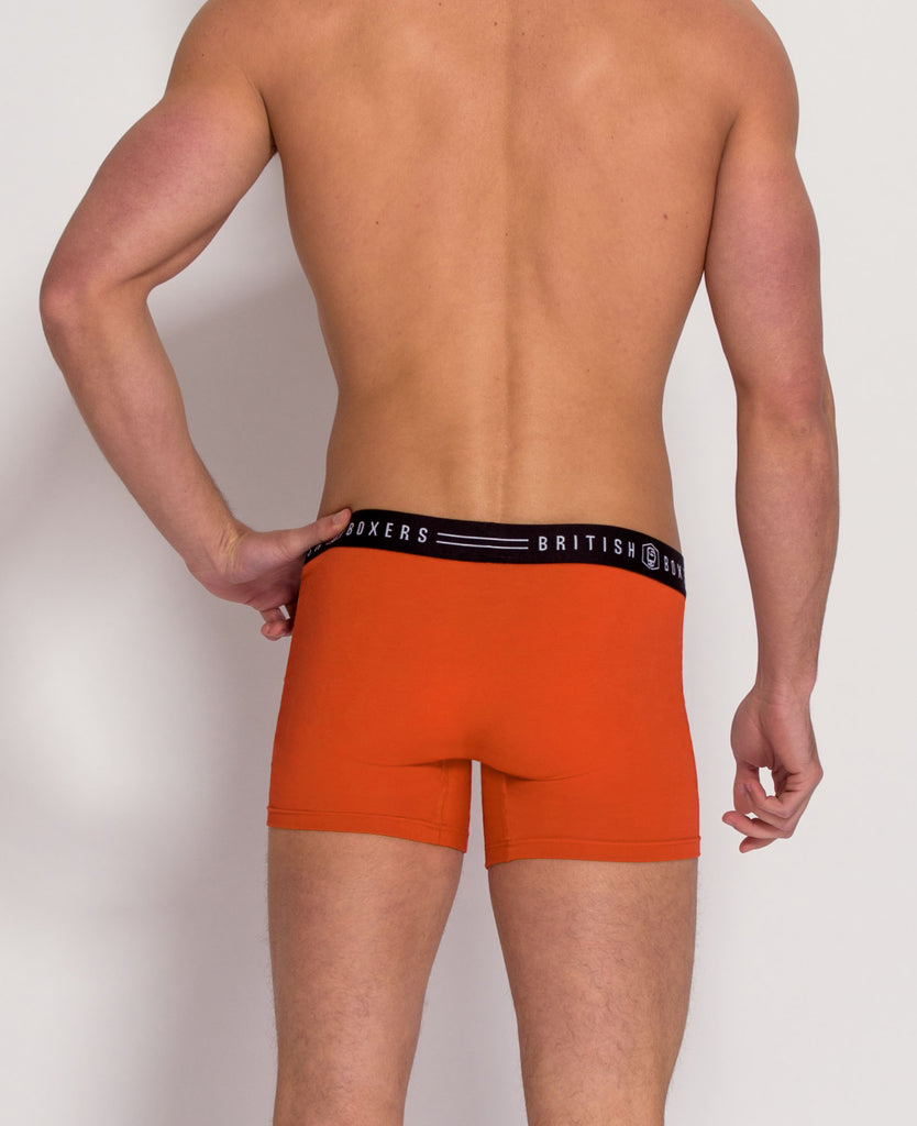 6 Month Subscription! 1 Pair of All Brights Stretch Trunks for 6 months
