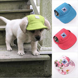 FASHIONABLE CAP FOR DOGS