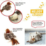 Electric Melody Bird Toy