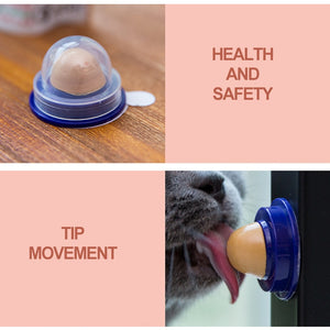 Healthy Pacifier For Cats